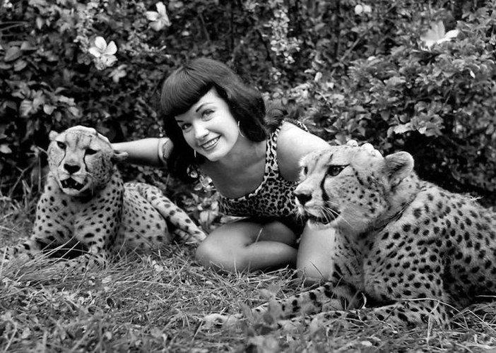 bettie cheetah 2.jpg