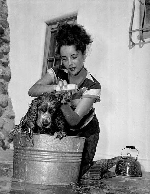 Interesting Vintage Photos of Classic Movie Stars Spending Time With Their Pets (17).jpg