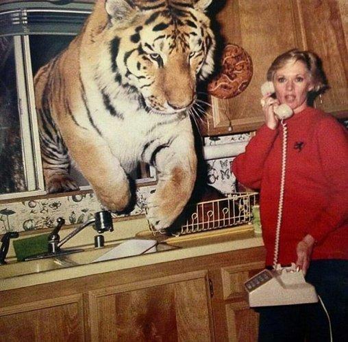 Tippi Hedren home California  1992.jpg