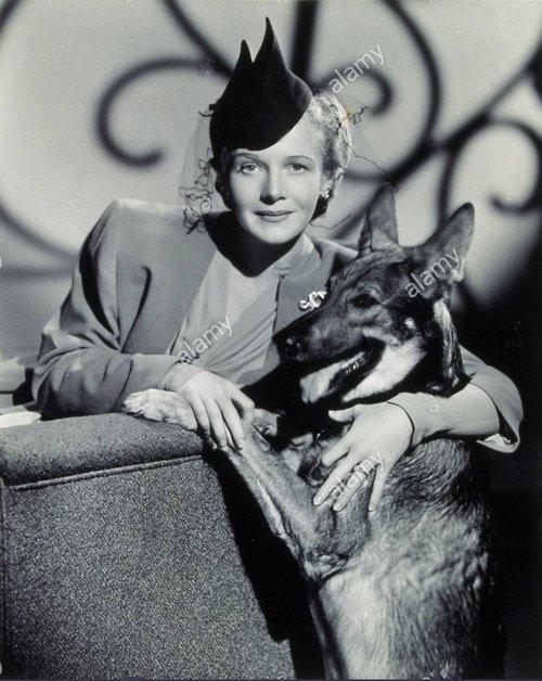 1942-film-title-eyes-in-the-night-director-fred-zinnemann-studio-mgm-F6HBFF.jpg