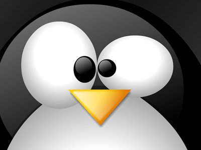Linux_Penguin_freecomputerdesktopwallpaper_p.jpg