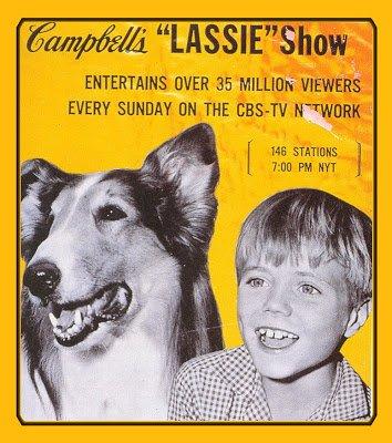 lassie-4.jpg